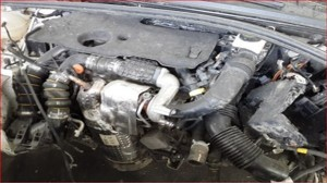 c4 1.6 hdi çıkma motor