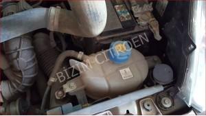 nemo çıkma motor su kabı